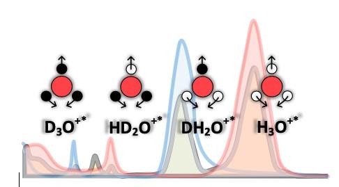 在当前研究中已确定的轻(红色),重(蓝色),半重(灰色)水和离子物质的红外光谱。红色,白色和黑色圆圈分别表示氧,氢和氘原子。